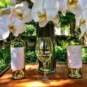 Trinchero Napa Valley Wines delicious Sauvignon Blanc