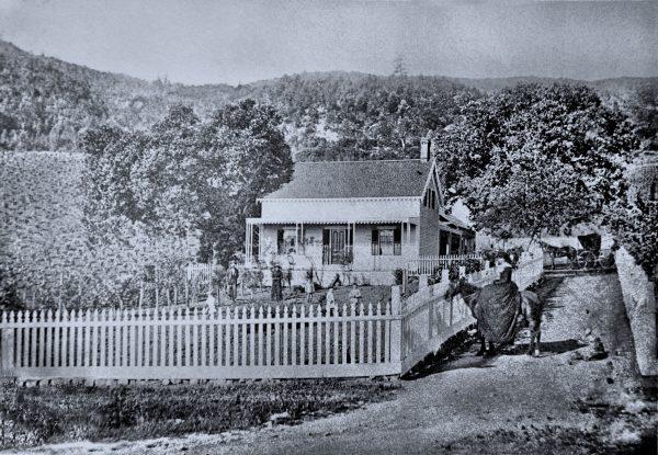 Josephine Tychson, near her vineyards in St. Helena