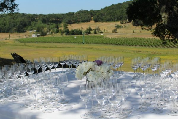 An extraordinary view of the vineyard at Grieve Family Vineyards