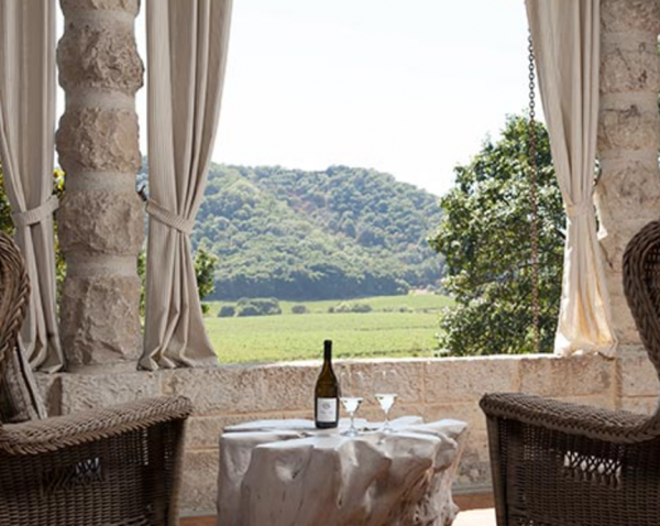Elegant & Rich Merlot. Stags' Leap Winemaker Dishes. VIDEO