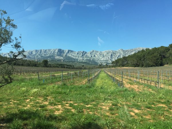The Wine Siren, Kelly Mitchell on location at the vineyards of Chateau Gassier in the majestic presence of Mount Sainte Victoire.