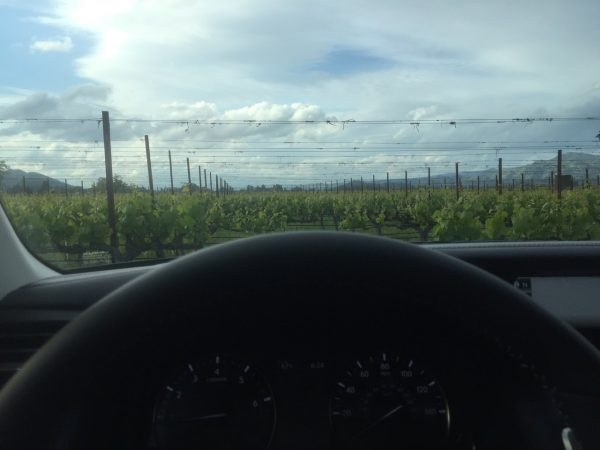 View of Napa Vineyards before my journey to Pebble Beach Food and Wine in my 2017 loaner from Lexus USA