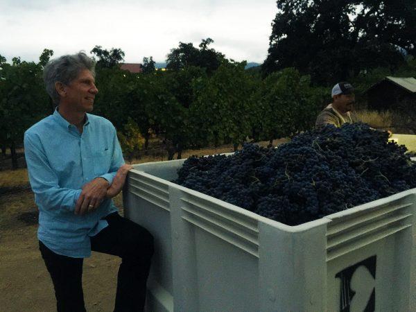 Harvest: Kevin Morrisey on Wine & Ehlers Estate