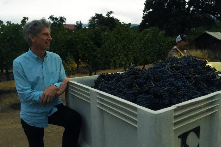 Harvest: Kevin Morrisey on Wine & Ehlers Estate