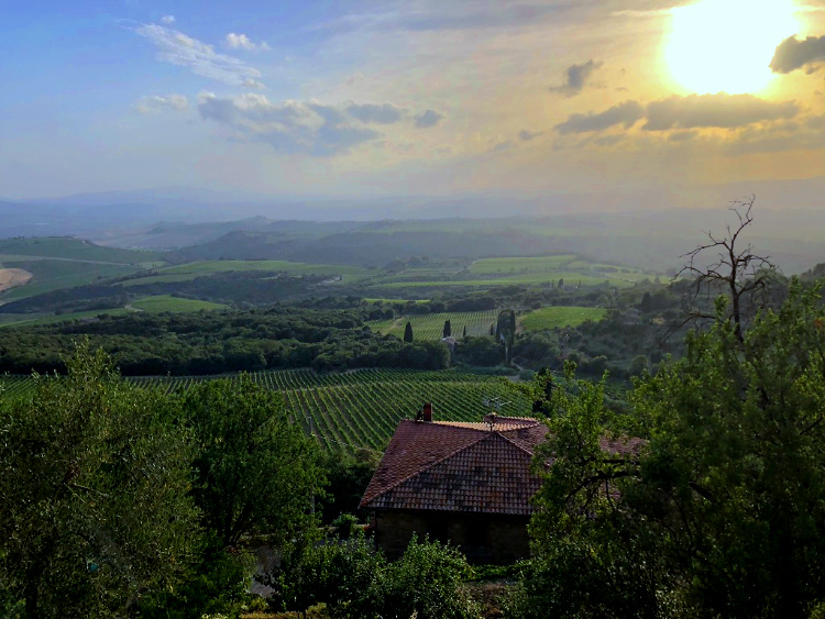 The Wine Siren, Three Days in Tuscany