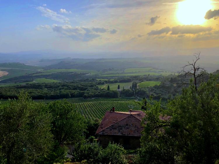 The Wine Siren, Three Days in Tuscany