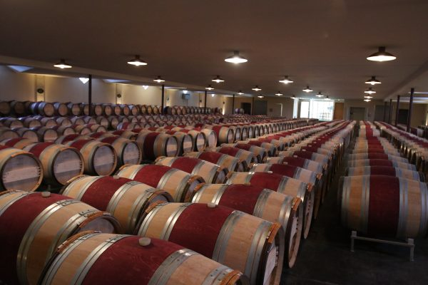 The barrel room of Chateau Malartic Le Graviere
