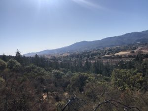Meadowood Napa Valley before the destruction of the fires in 2020