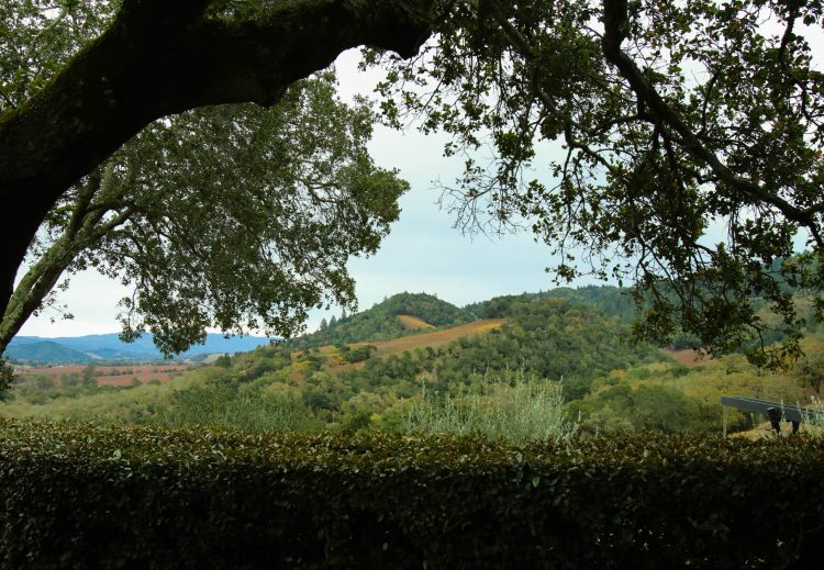 View from of Napa Valley from Promontory