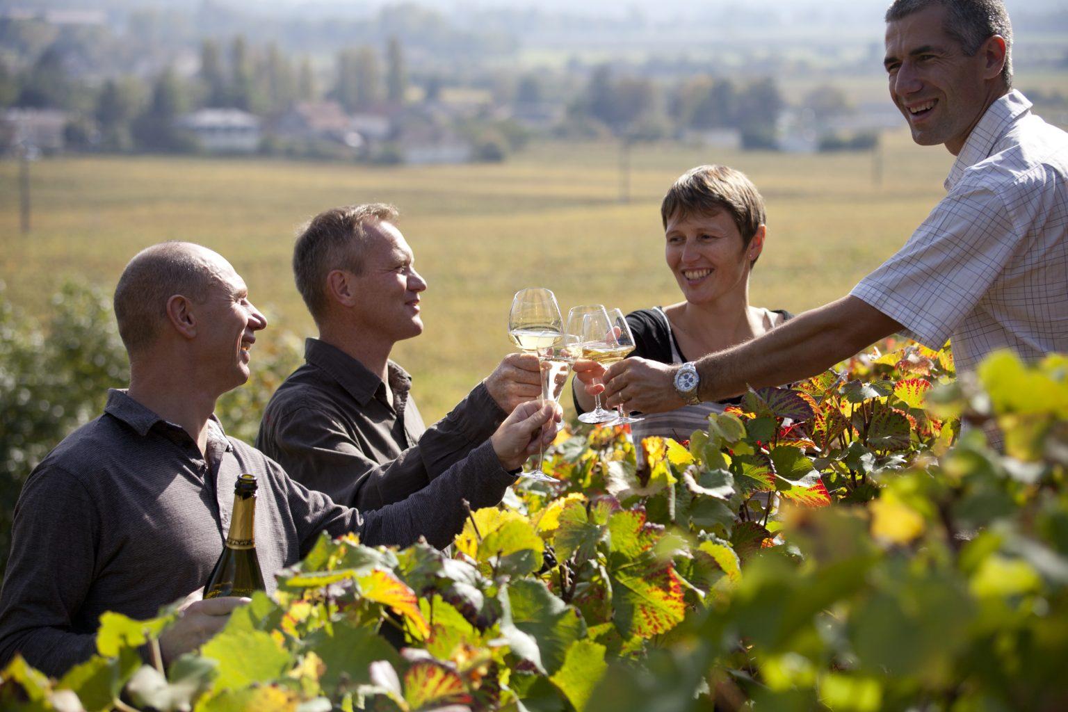 Understanding Bourgogne. A Journey of Spirit & Soul.