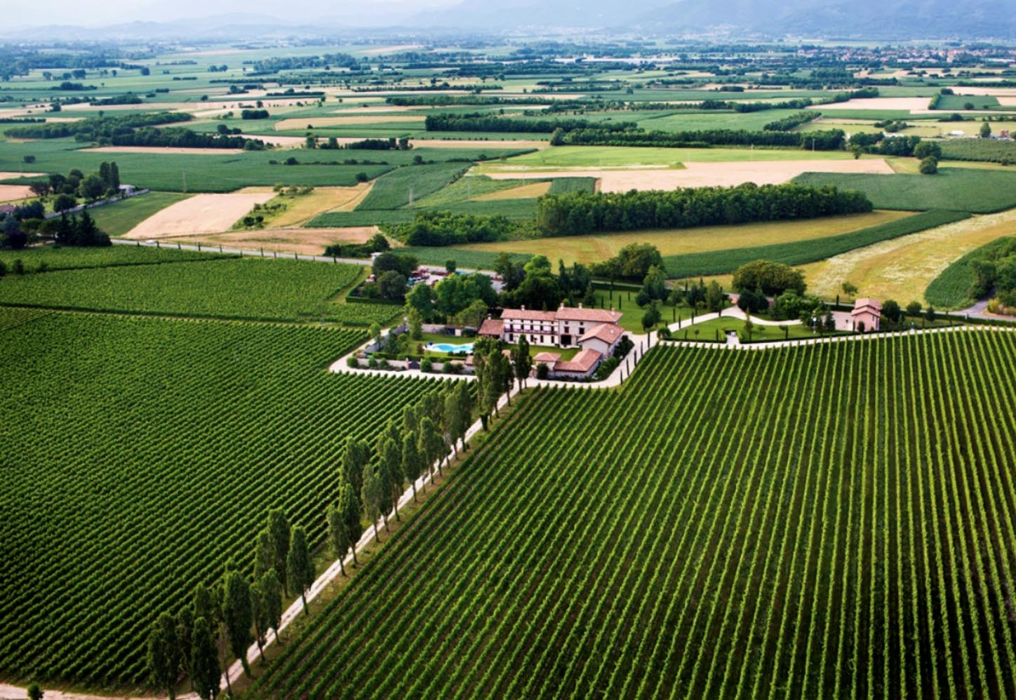 The scenic landscape of the country house and vineyards at Zorzettig