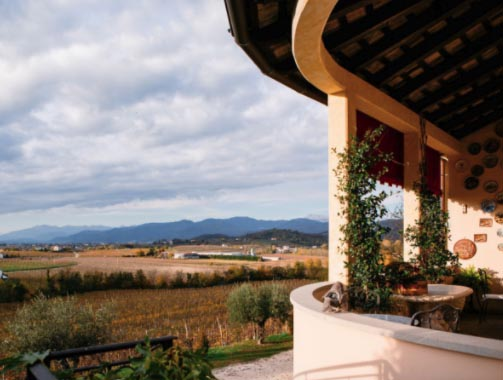The view from Zorzettig's Rotunda of surround vineyards