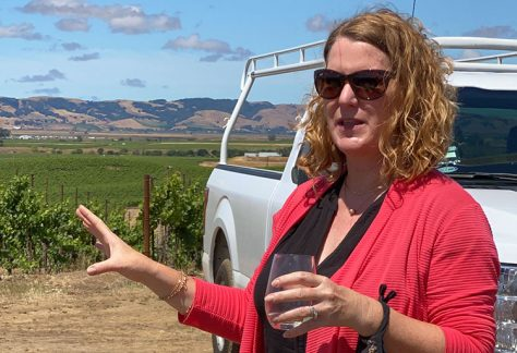 Carneros' Opulent Treasure: Bouchaine Winery